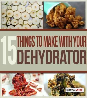 15 Dehydrated Foods To TrySurvival Life