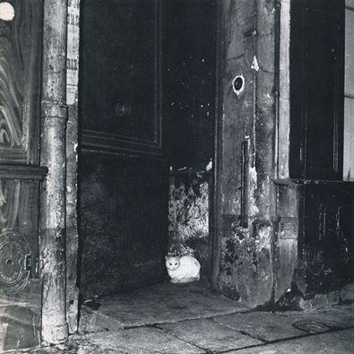 Paris1952-Herbert-Tobias.jpg (395×395)