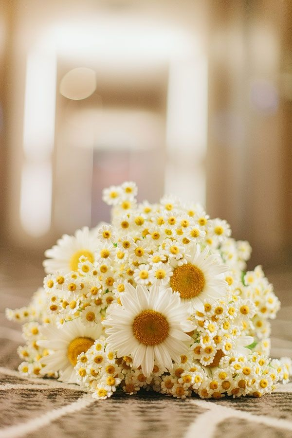 daisy wedding flower bouquet, bridal bouquet, wedding flowers, add pic source on comment and we will update it. www.myfloweraffair.com can create this beautiful wedding flower look.