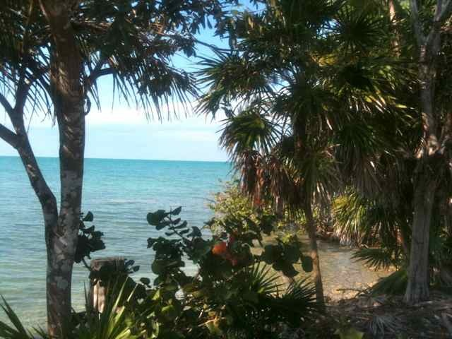 For Sale: Heaven's Point is a 73-acre high land Peninsula that is well-drained, partly cleared, and easily accessed with trails. It has 6,800 feet of sea coast on Corozal Bay which...see more.    Contact for Pricing. Corozal District, Belize
