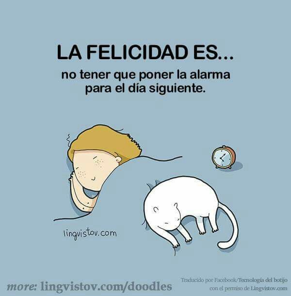 La felicidad es....