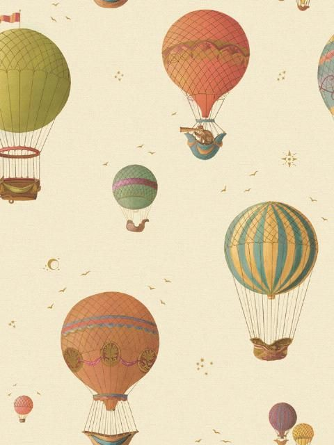 Hot Air Balloon Wallpaper Interior Decorating