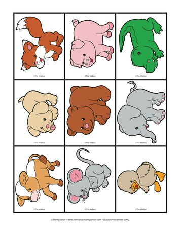 Baby Animal Cards, Lesson Plans - The Mailbox