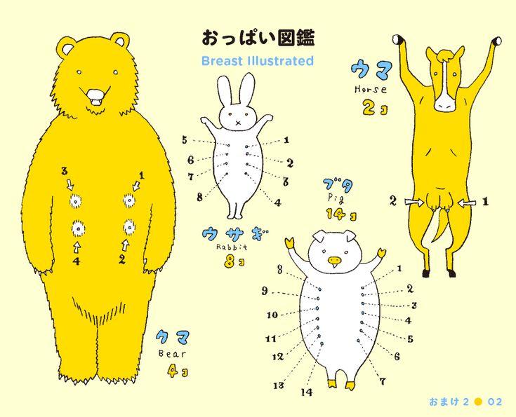 Breast Illustrated