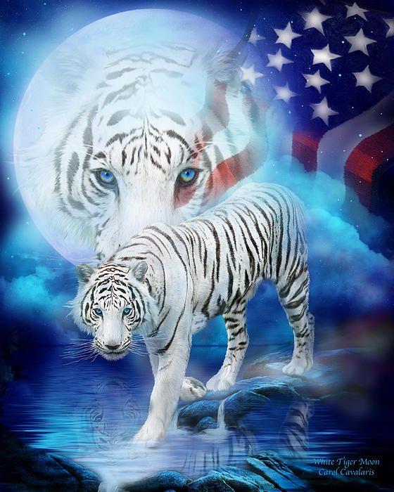 White Tiger Moon Patriotic By Carol Cavalaris