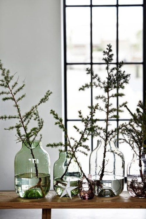 Simple minimal Christmas decor with bottles and green evergreen branches.
