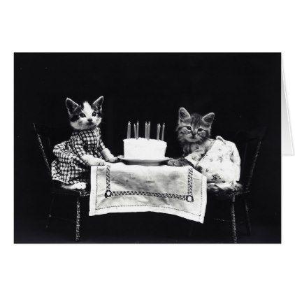Happy Birthday to Meow | Kitties with Cake Card - birthday gifts party celebration custom gift ideas diy