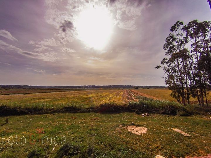 Blog_op-jacht-naar-huizen-in-Portugal