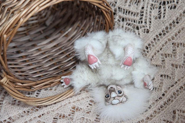 @дневники — Equilibrium  Прелестная белая мишка Зефирка, первая из трех мишек-десертов, очень добрый, пушистый, ласковый и немного застенчивый ребенок, любящий пошалить, поспать в любимой корзинке, и конечно же поесть разных вусностей. Станет верным другом и спутником, маленьким украшением любого дома. Ищет хозяина или хозяйку.