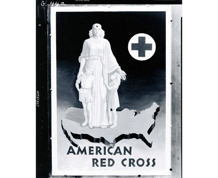 Assignment 3 the american red cross