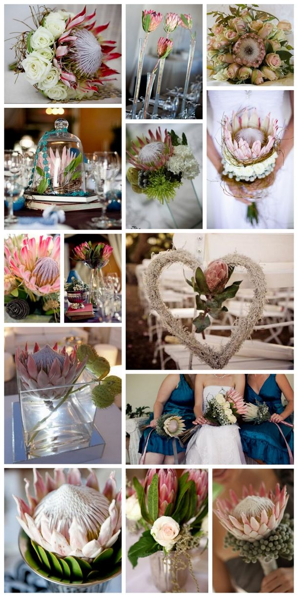 Wedding Flowers: The Protea | SouthBound Bride