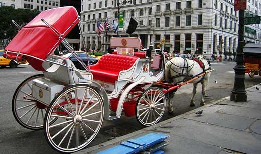 nothing like a horse-drawn carriage ride in central park