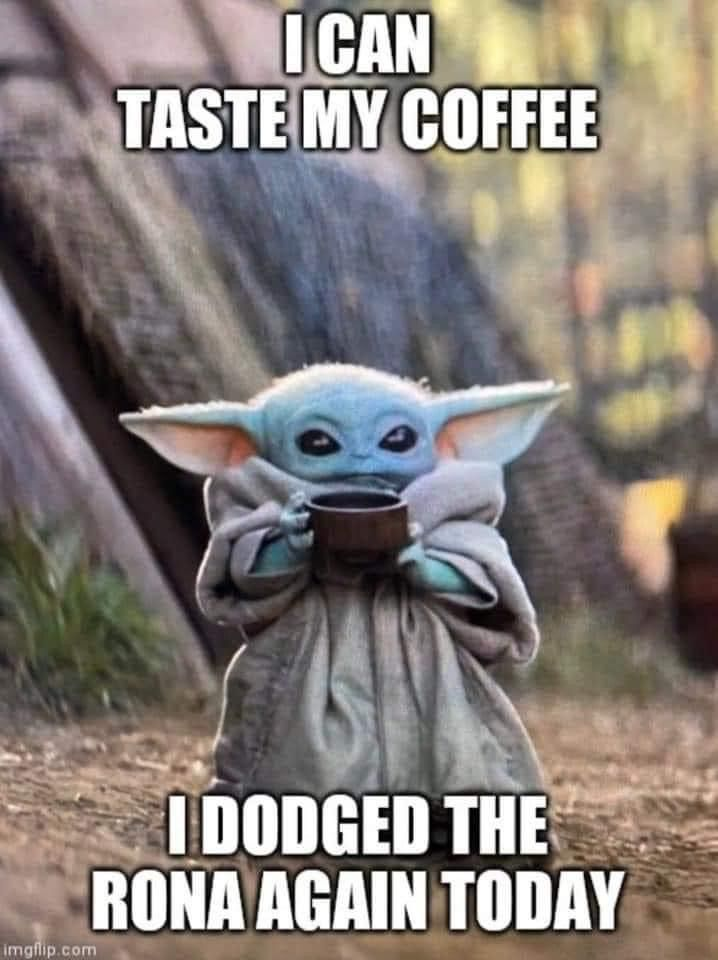 Pin By Tina Hubbard On 2020 Yoda Funny Yoda Meme Star Wars Humor