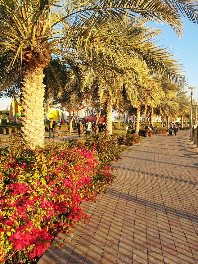 Al Barsha Pond park. Dubai, UAE. By Eva Badr