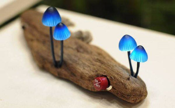 lampada fungo2
