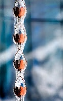 """rain chain for the porch. would be fun to watch when it storms. I will be adding this to my Summer """"To Do"""" List!!"""