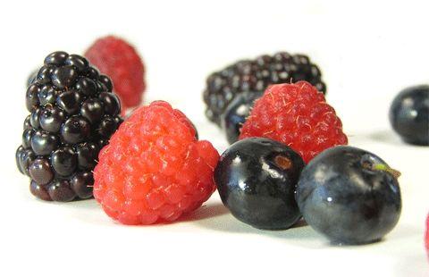 Powerful Longevity Foods