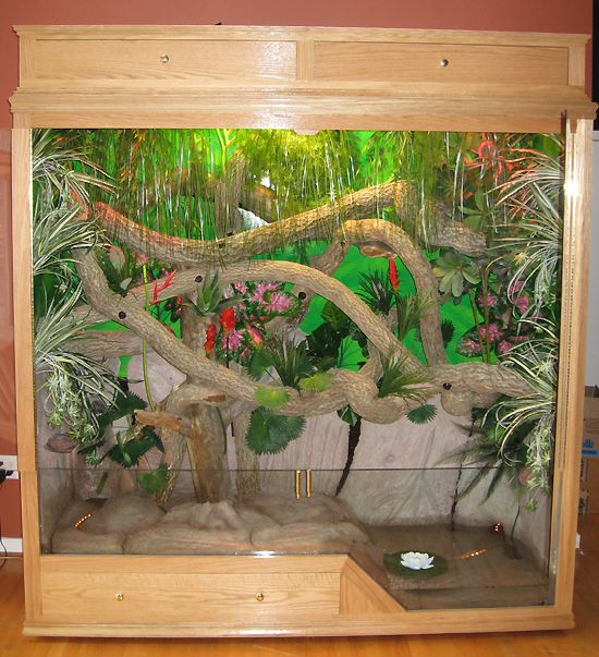 112 Best Diy Reptile Cages Images On Pinterest Reptile