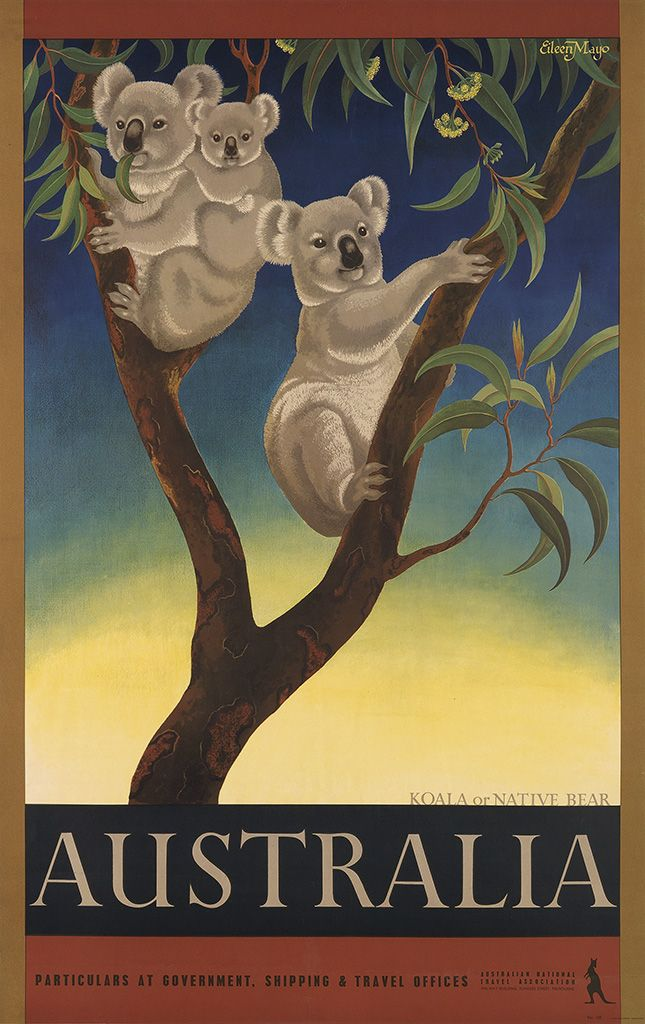 Vintage Travel Poster - Australia - Koala of Native Bear - c1957 - by Eileen Mayo (1906-1994).