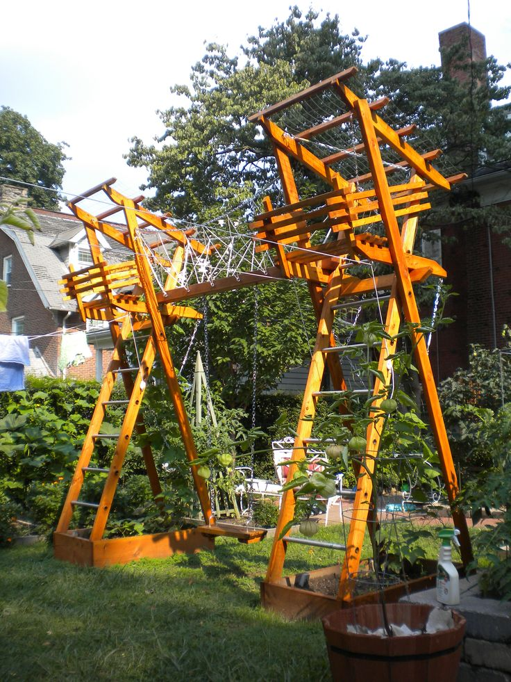 Amazing play structure and veggie garden
