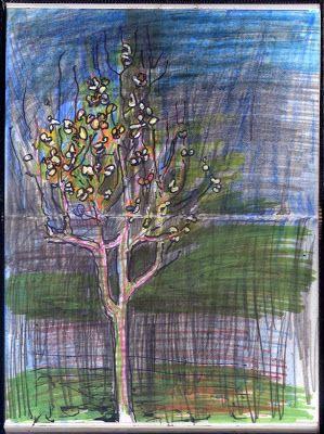 LUIS DESENHA: O Sol nas Folhas da Macieira