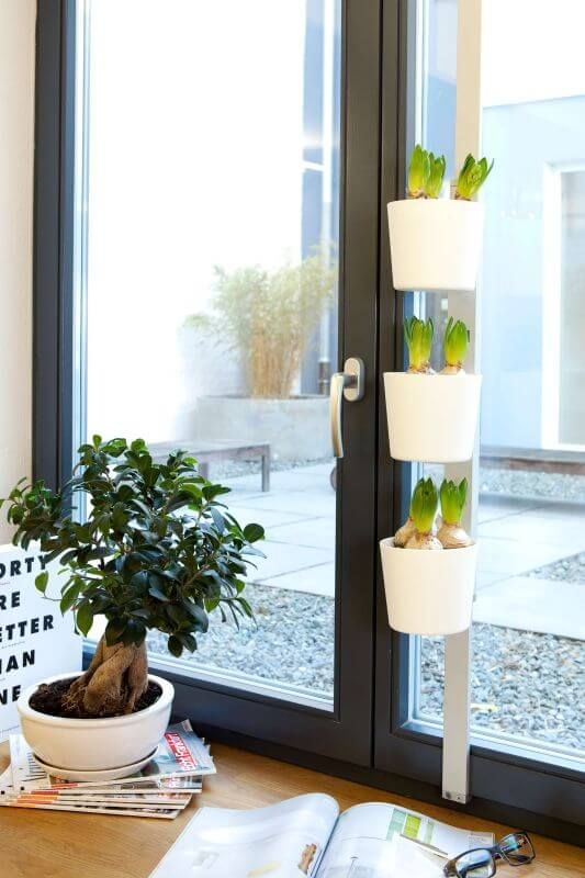 Kräuter- und Pflanzenleiter für Fenster VEGA in weiß geeignet für Fenster- und Wandmontage einfache Montage inkl. Pflanzentöpfe,Kreidesticker und Kreidestift für alle gängigen Pflanzentöpfe passend für Fenster zwischen... #kräuterleiter #pflanzenleiter# kräuter #pflanzen# küche #ideen #vega