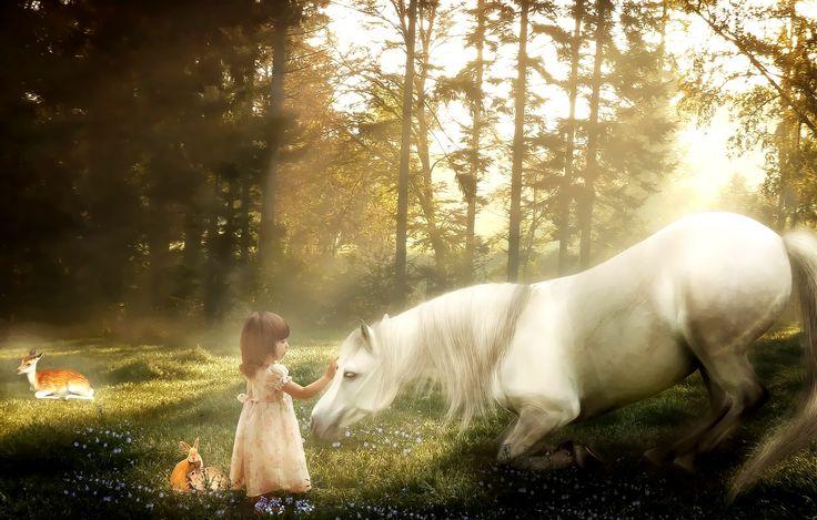 Koń, Dziewczynka, Las