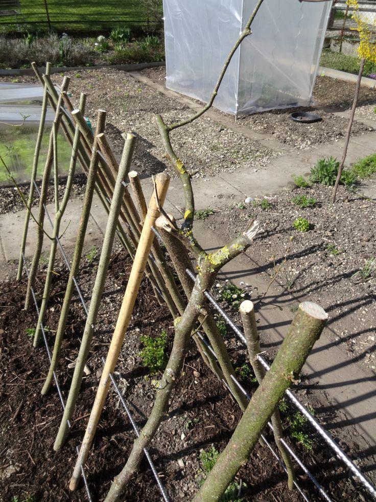 Kürbis und Gurken - Klettergestell. Klapp- und zerlegbar mit Stecken aus dem Garten und Armierungseisen-Abschnitten.