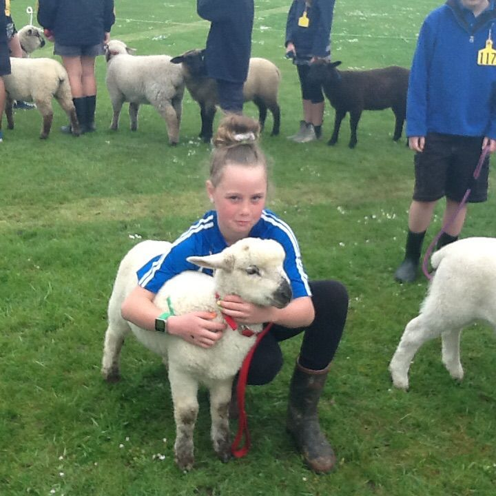 Regan with her sheep at Franklin group day 2014