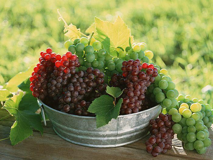 .grapes