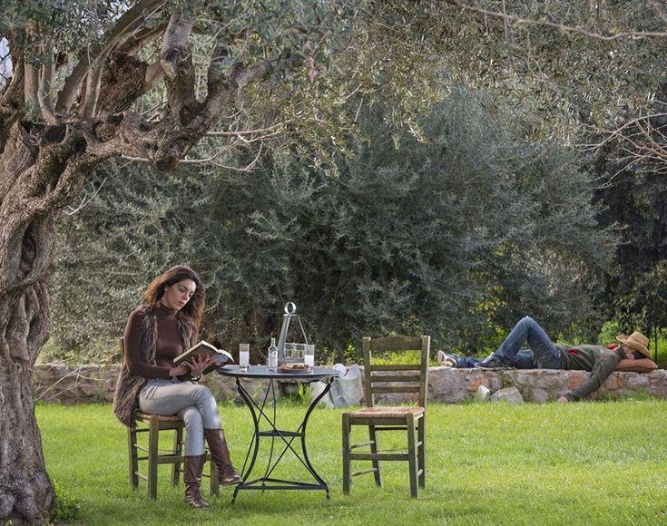 8 ξενώνες για να έρθετε σε επαφή με τη φύση