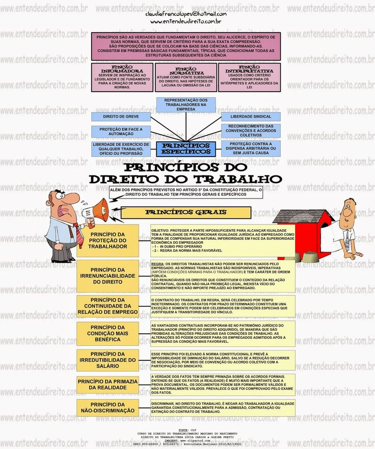 Princípios do Direito do Trabalho   Na doutrina podem ser encontrados diversos conceitos que explicam o que são os princípios no Dir...