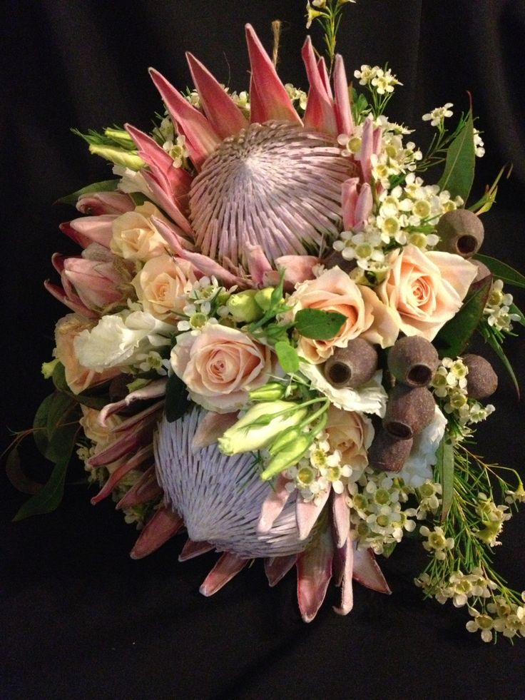 brides bouquet with king protea champagne roses geraldton wax flower & gum nuts