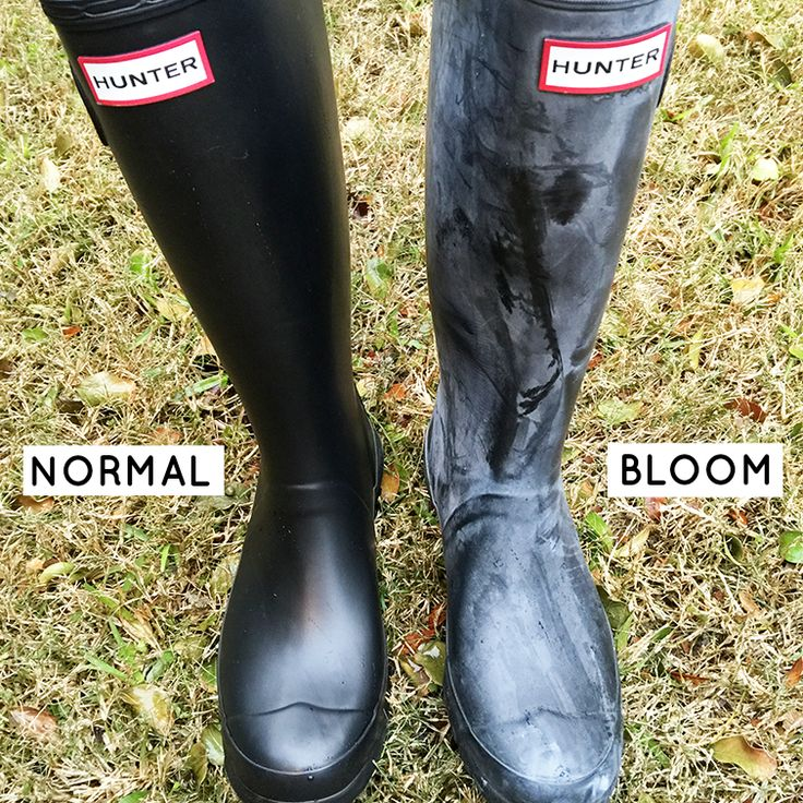 DIY How to clean your Hunter rain boots to remove white bloom the easy and affordable way. http://www.thesouthernthing.com/2014/11/how-to-clean-your-hunter-boots-remove.html #hunter #diy