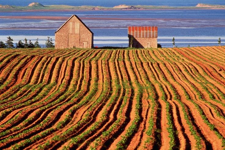Isla del Príncipe Eduardo. Canada