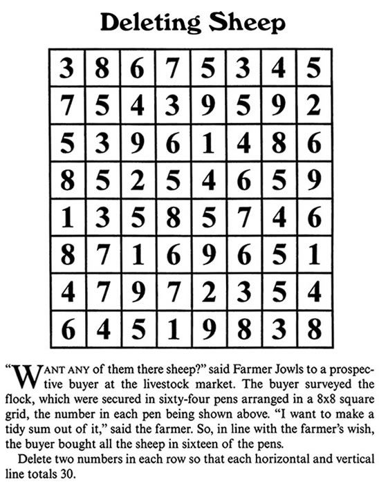 Welcome to Dover Publications Brain Busters! Mind-Stretching Puzzles in Math and Logic