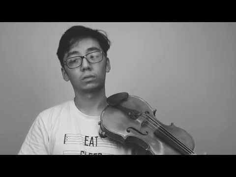 When Your E String Whistles - YouTube | TwoSetViolin | Music