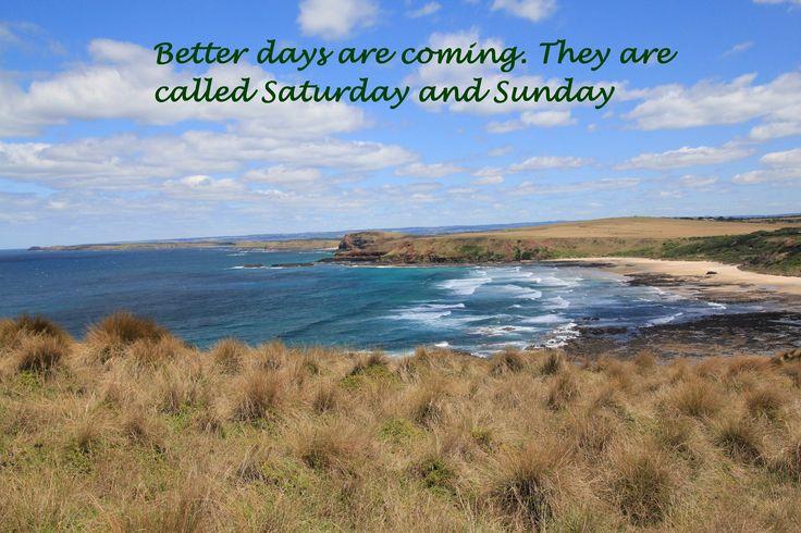Walk from Pyramid Rock to Berrys Beach, Phillip Island