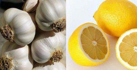 """A fokhagyma (Allium satilum) az amarilliszfélék családjába tartozó gyógy- és fűszernövény. Erős antibakteriális és gombaölő hatású, magas A,B,C,E vitamin tartalma miatt erős antioxidáns. Az érelmeszesedés, vérkeringési problémák, magas vérnyomás megelőzésére és gyógyítására kiválóan alkalmazható. Csökkenti a vér """"káros"""" koleszterin (LDL) szintjét, miközben növeli a """"jó"""" koleszterin (HDL) arányt, így megakadályozva az érelmeszesedést. Javítja a szívizom [...]"""