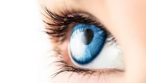 Best Optician in Kerry with offices in Tralee and Killorglin. Getting your eyes tested in Kerry