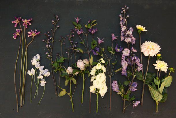 summer flower palette