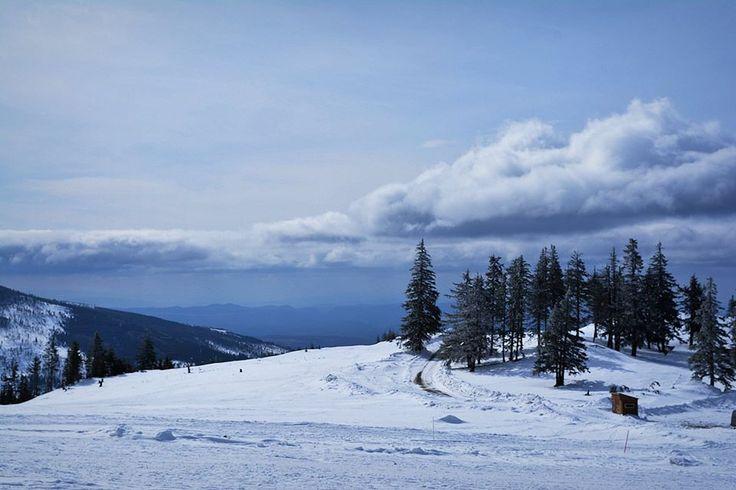 https://www.facebook.com/patriotaeuropa/photos  Madarasi-Hargita (1801 méter magas) - Hargita-hegység - Székelyföld- Erdély - 2015. március 15.  fotó Fodor István