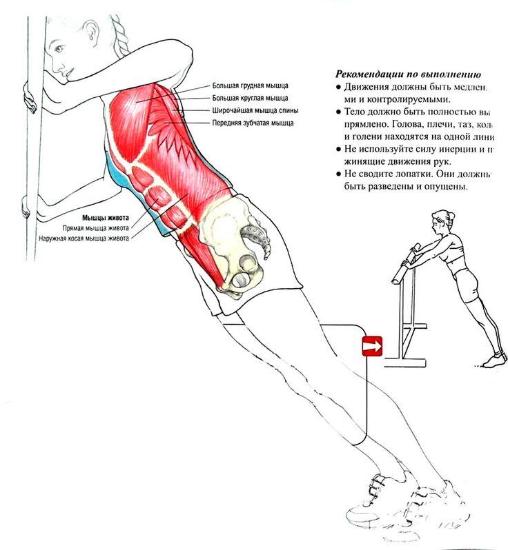 кардионагрузки для сжигания жира на животе