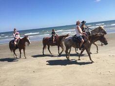Photo of Galveston Island Horse & Pony Rides