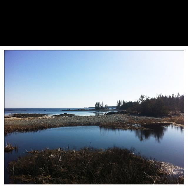 Fralic cove close 2 Blueberry Bay