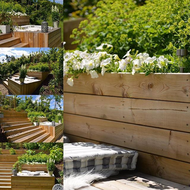 Åhhh underbara sommar ! När jag ser dessa bilder så blir jag riktigt glad , vilket ljus, vad fin vår trädgård blivit sen vi flyttade in för 2,5 år sen 😍 . Mitt älskade radhus, här vill jag stanna ❤️! #boklok #radhus #radhustäppa #trä #trädgård #terassodling #terass #boklok #petunior #daggkåpa #sommar