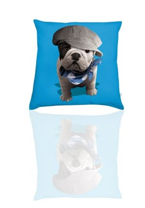 17 meilleures id es propos de bouledogue bleu sur pinterest bulldogs bouledogues anglais. Black Bedroom Furniture Sets. Home Design Ideas