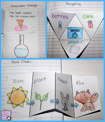 Primary Interactive Science Notebook Activities - make a food chain foldable