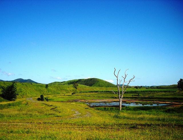 landscapes (9)