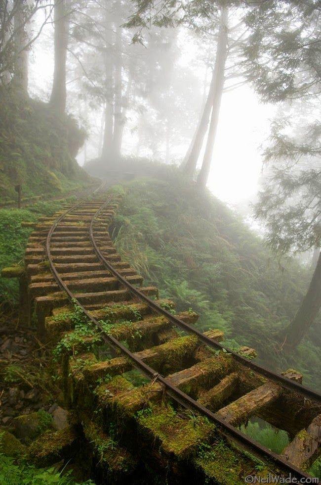 Trilhos abandonados, Taiwan                                                                                                                                                                                 Mais